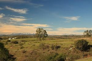 Pupuya Chile Kiteworld travel