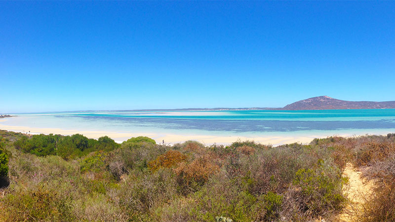Langebaan - Shark Bay