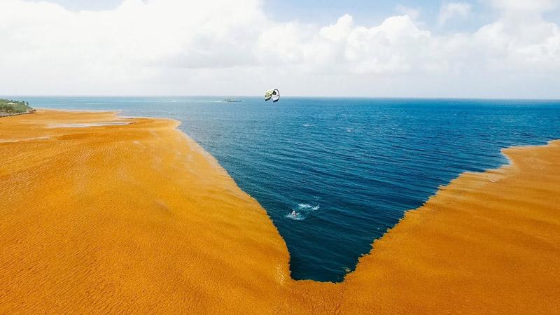 Jake Kelsick - Seaweed Ocean - VLOG 60
